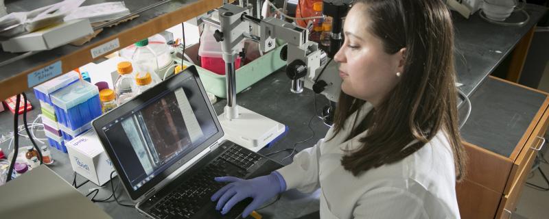 Female PhD student in Professor George Truskey's lab